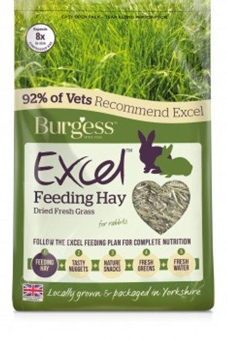 Excel feeding hay dried grass