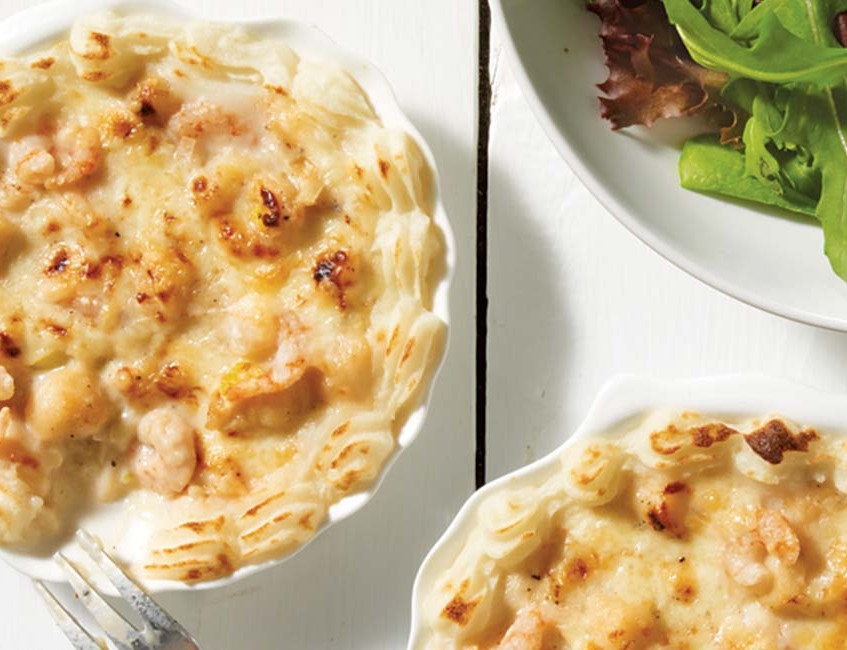 coquilles_st_jacques
