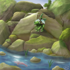 The Frog Rider