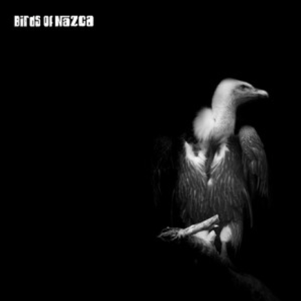 BIRDS OF NAZCA