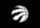 Raptors Logo black.png