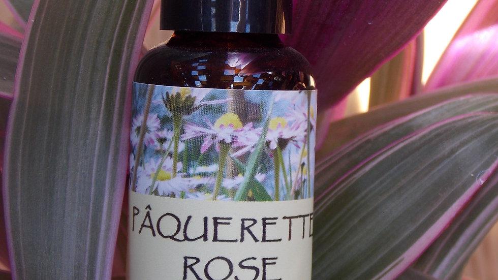 MACERAT HUILEUX PAQUERETTE ROSE 30 ml