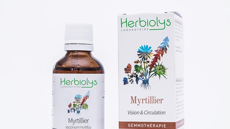 MYRTILLIER bourgeons bio