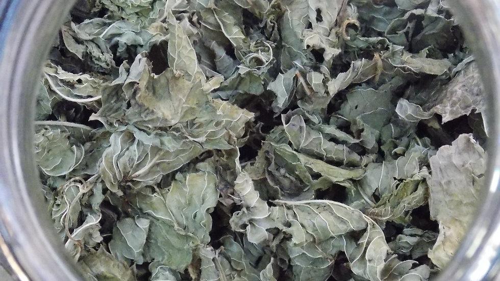 MENTHE VERTE feuilles bio