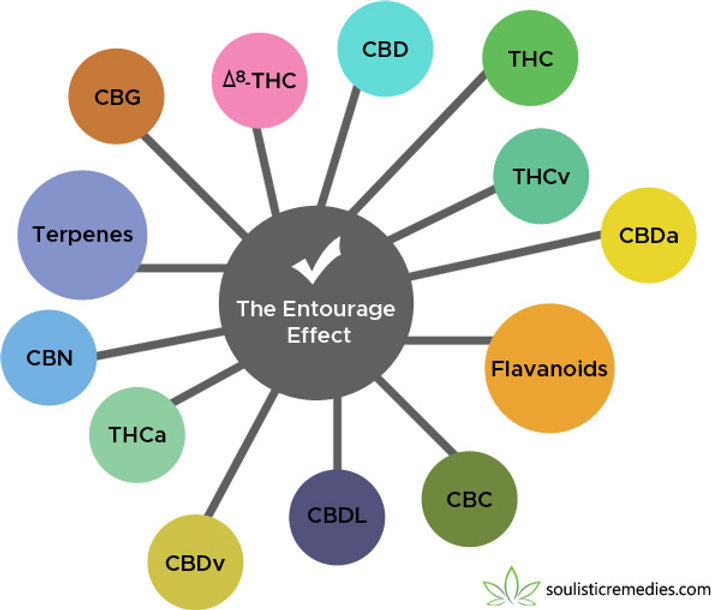 the-entourage-effect-soulistic-remedies.