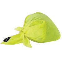 Ergodyne Hi-Viz Lime Chill-Its 6710CT