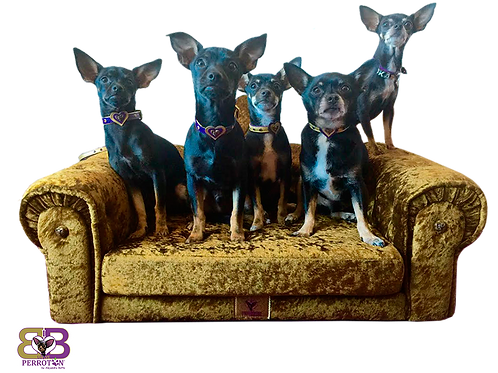 Sofá Chester para perros y gatos (Grande)