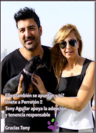 gracias+tony-perroton.jpg
