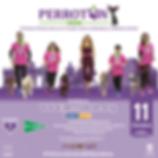CARTEL PERROTON 2020 - INSCRIPCIONES PRE