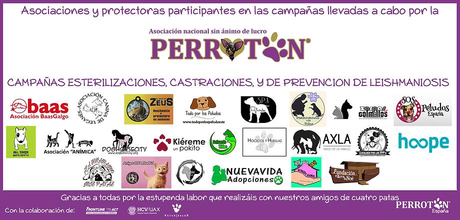VISUAL_PROTECTORAS_PARTICIPANTES_EN_CAMP
