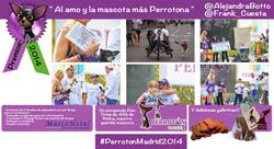 PREMIO PERROTÓN