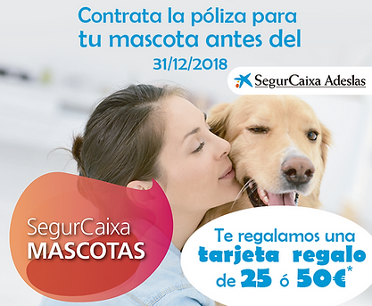 SEGURCAIXA.png