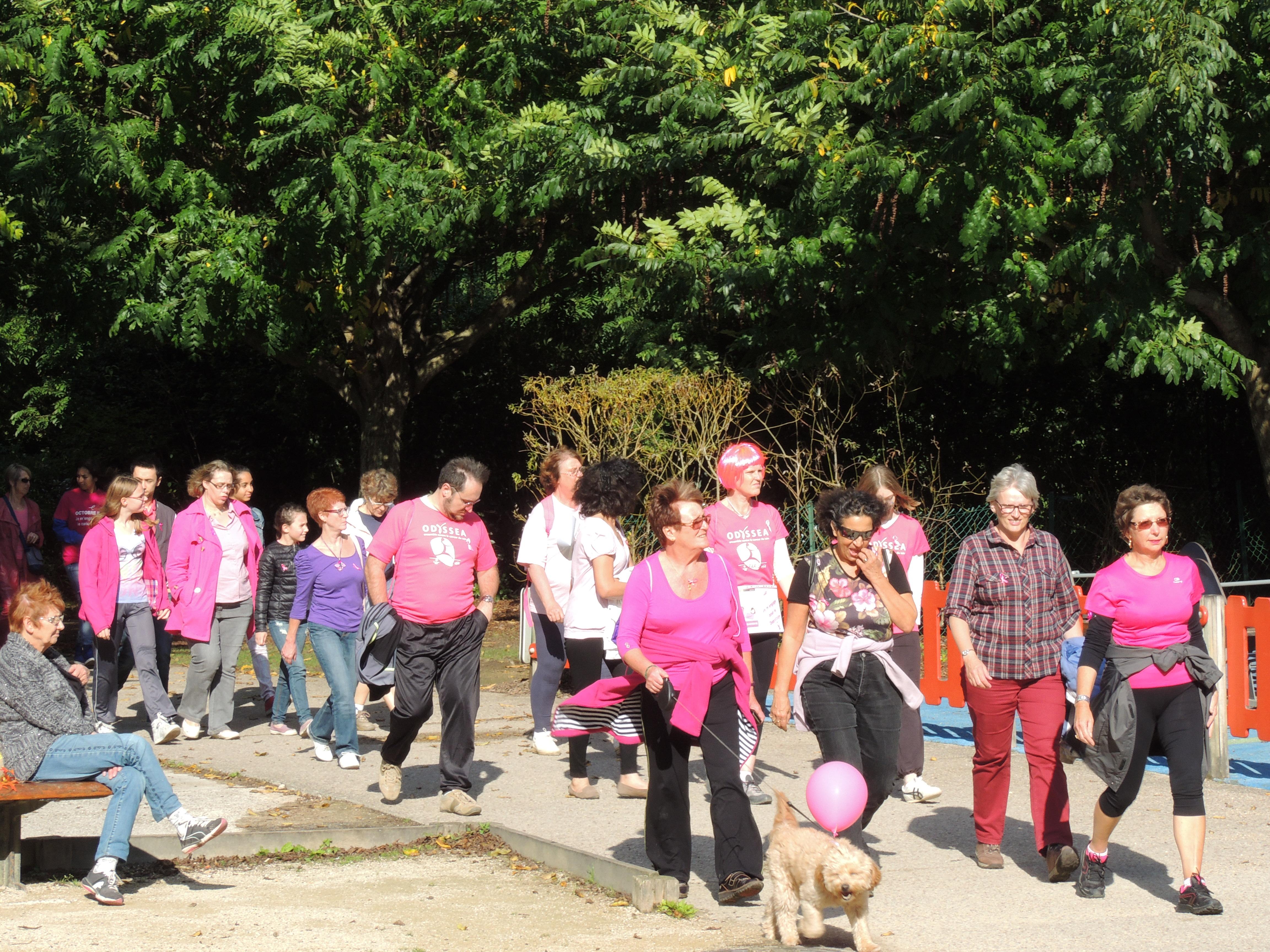 Marche Rose de Beauvais