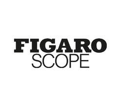 FIGAROSCOPE HANOI CORNER-01.jpg
