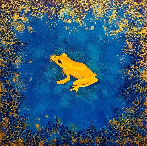 Golden Abundance Frog - Dominyka Usvaiskaya