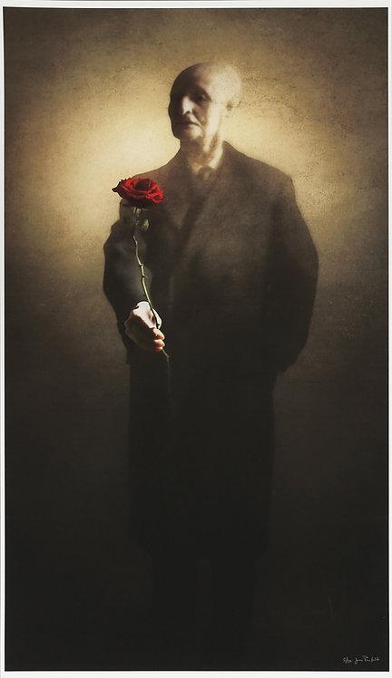The devil's Rose - Jan Rufelt