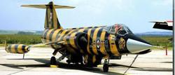 CF-104 NATO Tiger Association Paint