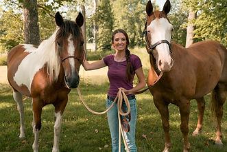 Horses used in natural horsemanship