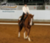 Horse Misty and Kyle Taylor Keller Western Dressage