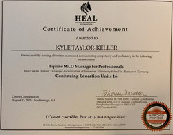 HEAL MLD Therapist