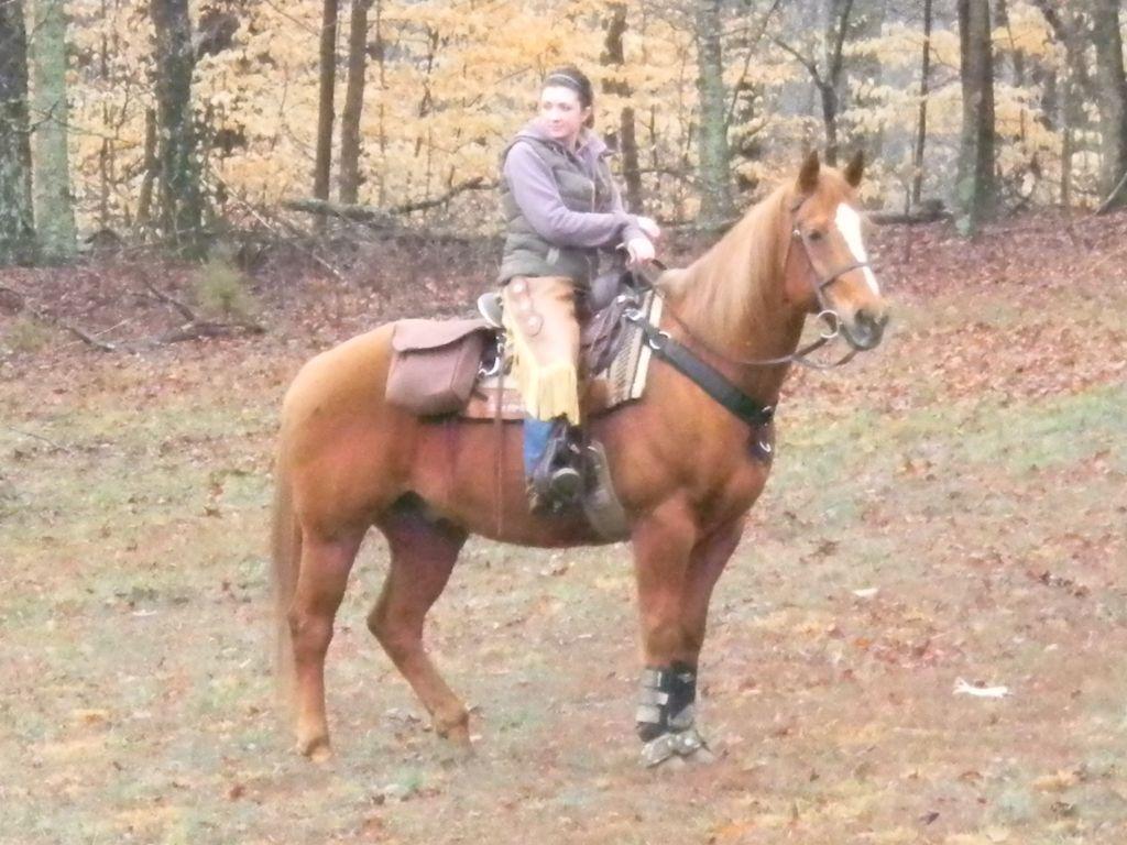trail rider