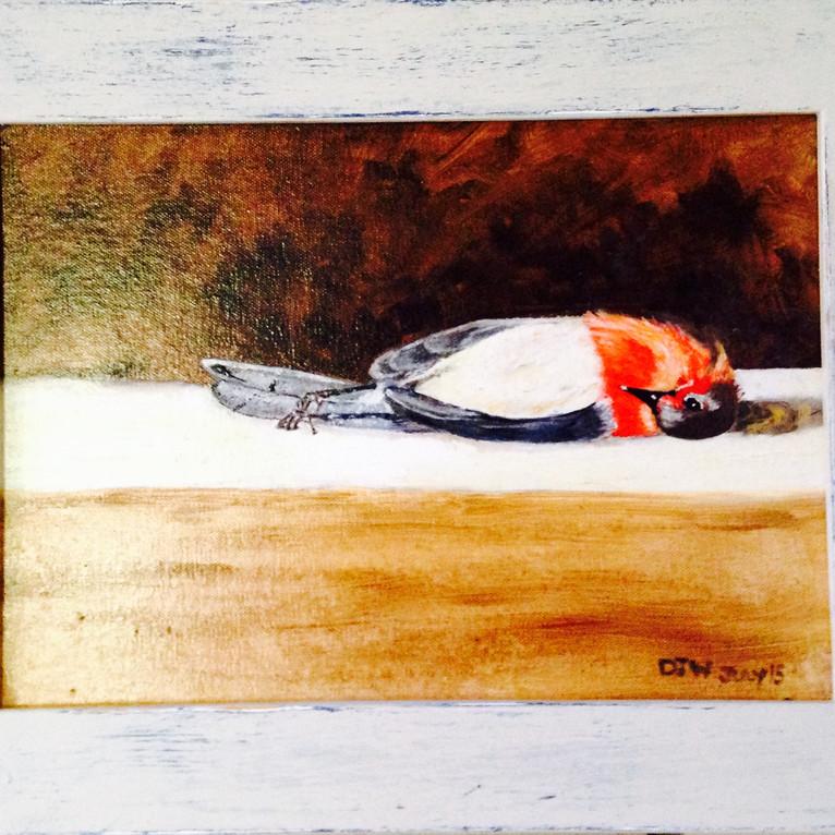 Fallen Robin