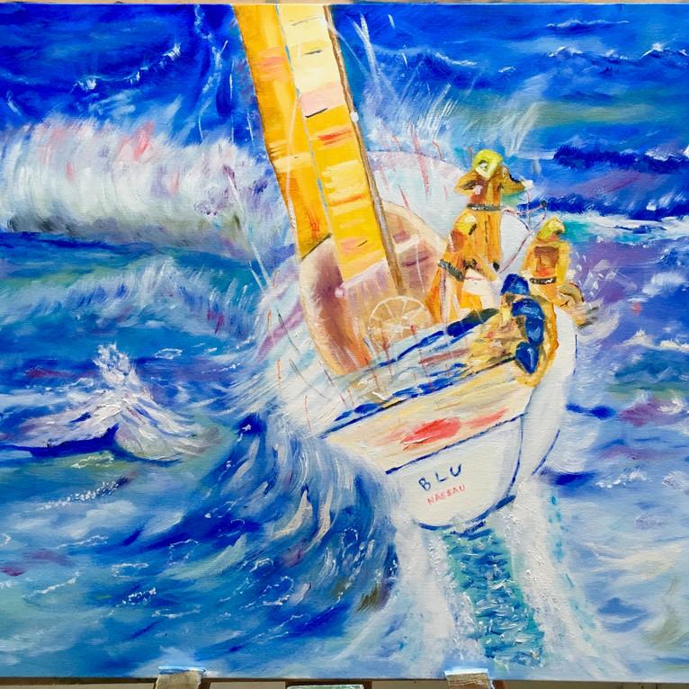 Sailing the Southern Seas