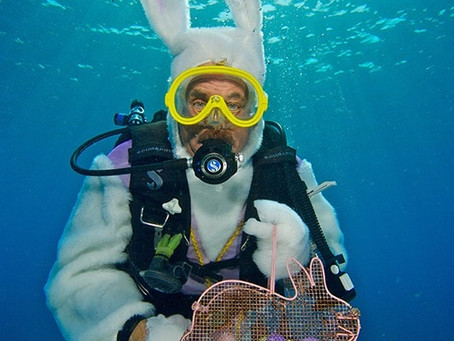 The Underwater Easter Bunny soon come! April 4th..don't miss the fun!
