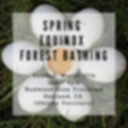 Spring Equinox Forest Bathing IG 3-11.pn