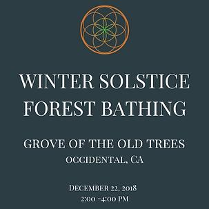 winter solstice IG.png