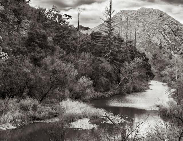 Landscapes-Malibu Creek Lake (FDmacro) 0