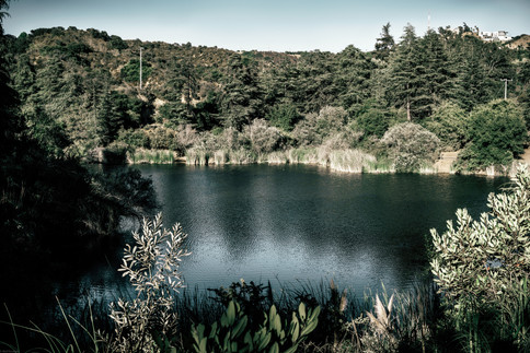 Landscape-Franklin Canyon Reservoir (sta