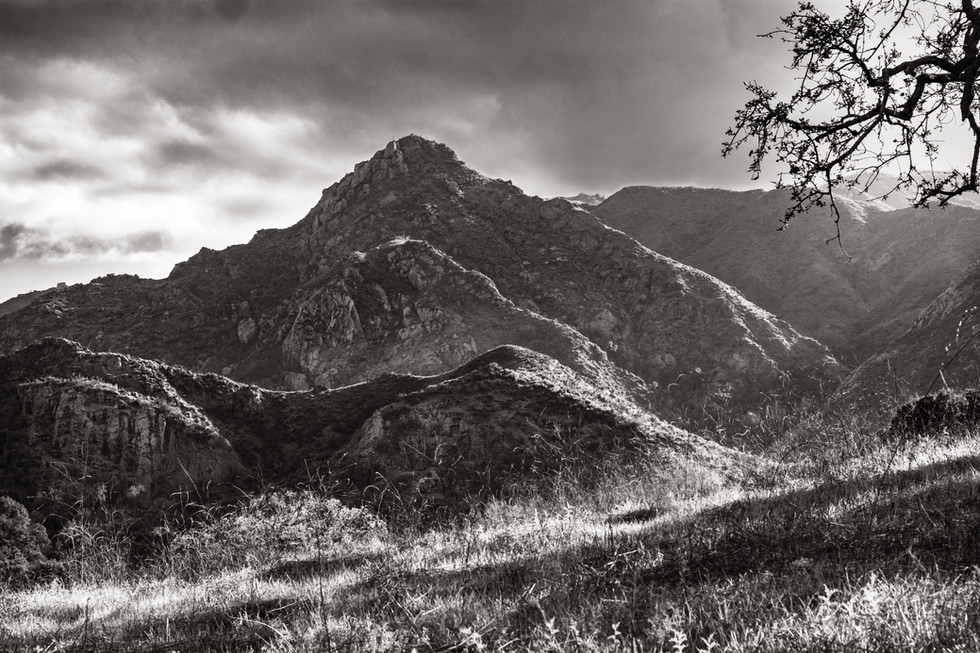 Landscapes-Malibu Creek (FDmacro) 03.15.