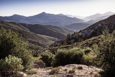 Landscapes-Chilao Angeles Crest view (pe