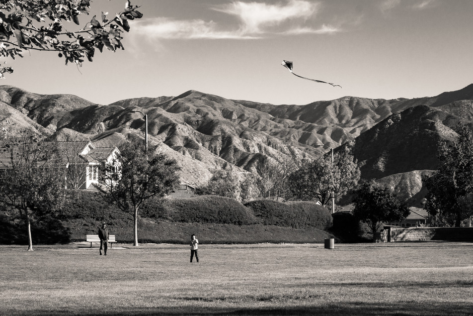A kite being flown