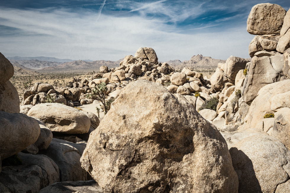 Landscapes-Joshua Tree (pergear25*) 10.2