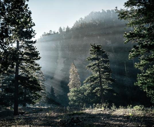 Landscapes-Morning fog on Mt Baldy (perg