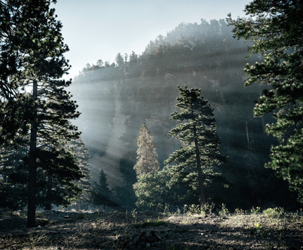Landscapes-Morning fog on Mt Baldy (perg