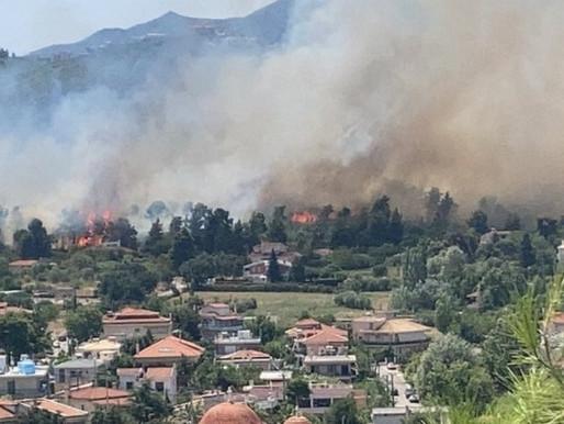 Συναγερμός για μεγάλη φωτιά στη Σταμάτα-Η φωτιά είναι κοντά σε σπίτια, δηλώνει ο δήμαρχος
