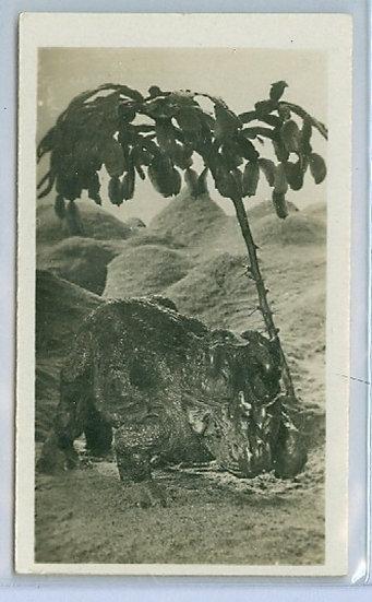 """1928 """"CENTROSAURUS APERTUS"""" TOBACCO CARD #10 Left"""