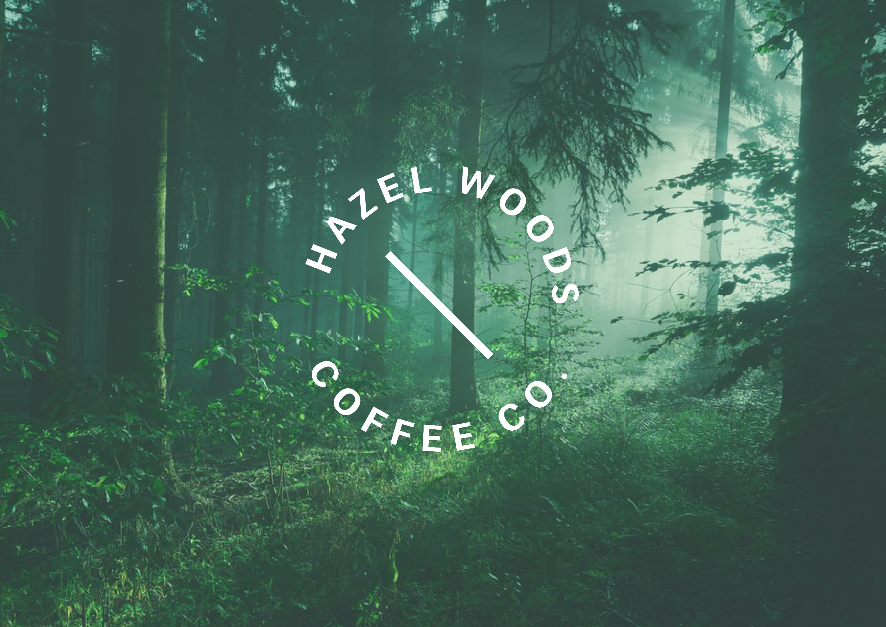 HW Forest