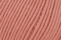 Gammel rosa (31) Alba