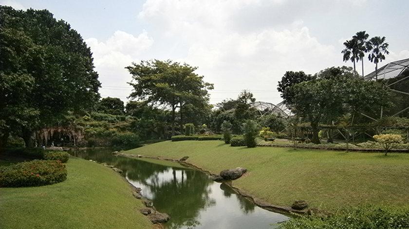 Jakarta City Safari