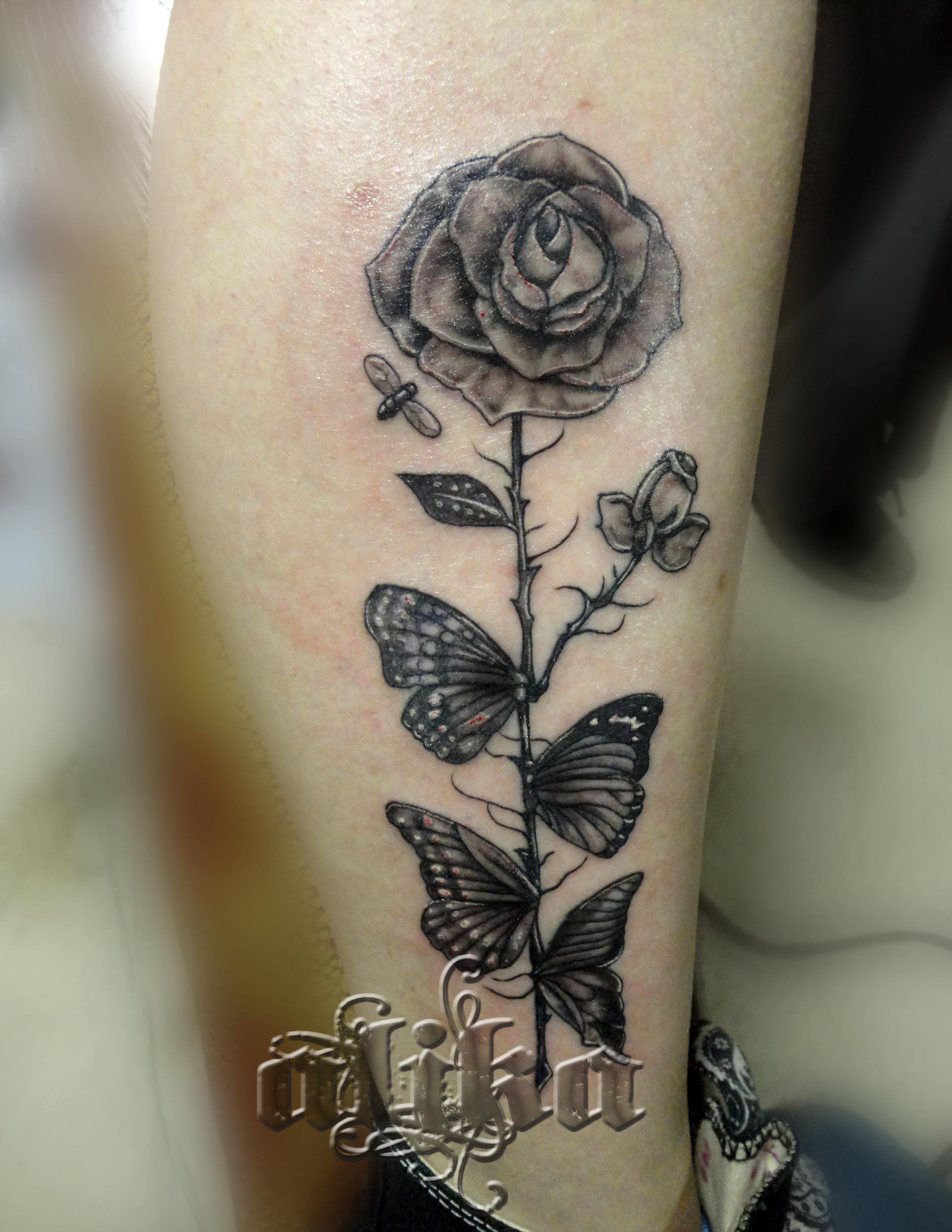 dahli rose