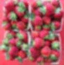 Strawberry quarts (1).JPG