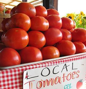 Good tomato pile.JPG