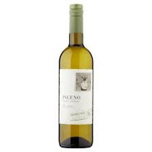 Ingeno Organic Pinot Grigio 20