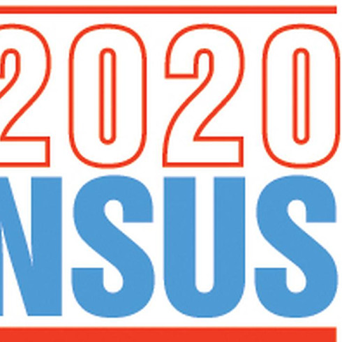 2020 Census Virtual Party