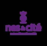 logo_nes.png