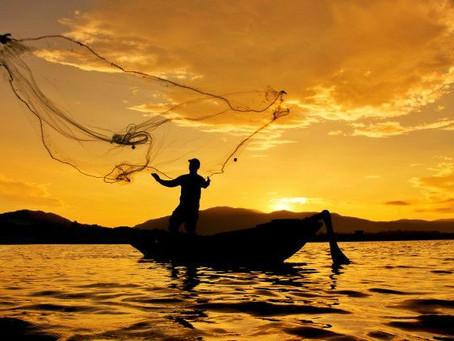 Campesinos y pescadores de Sucre se suben al bus de la reactivación con la estrategia 'Ruta e + i'